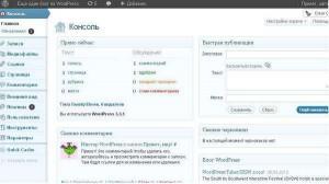 nastroika-wordpress1