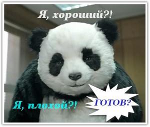 фильтр гугл панда