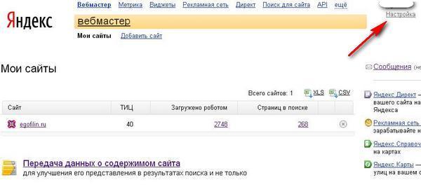 Yandex Webmaster5