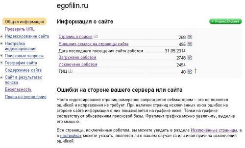 Yandex Webmaster7