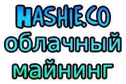 hashie-oblachnyj-maining